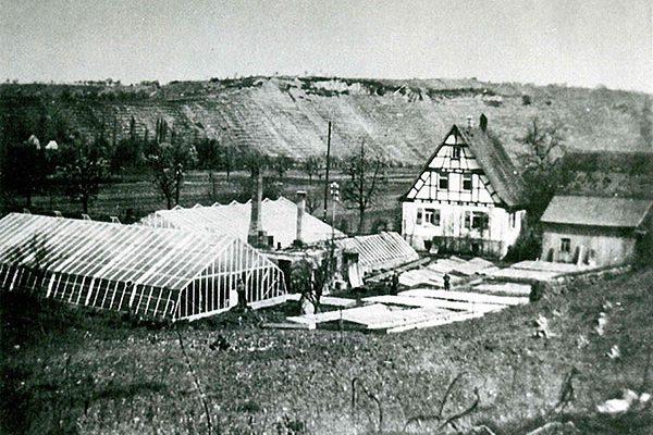 Gewächshäuser 1932