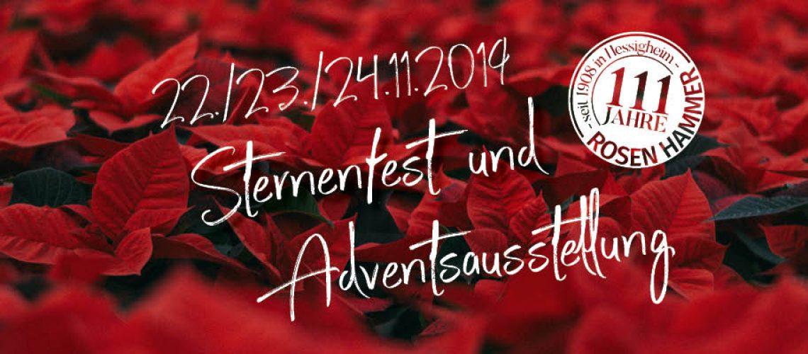 2019-sternenfest-beitrag